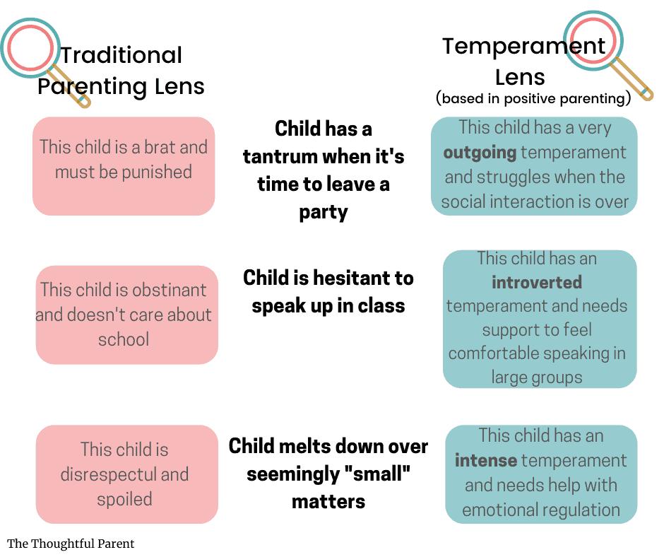 understanding temperament