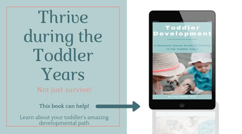 toddler development book